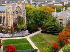 Top các trường đại học công lập hàng đầu nước Mỹ năm 2020