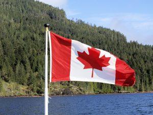 Học ngành nông nghiệp và các môn học liên quan ở Canada