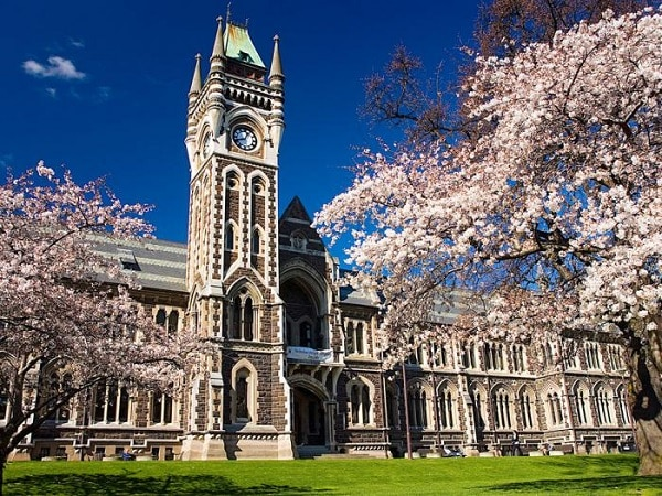 8 lý do nên chọn du học New Zealand 1