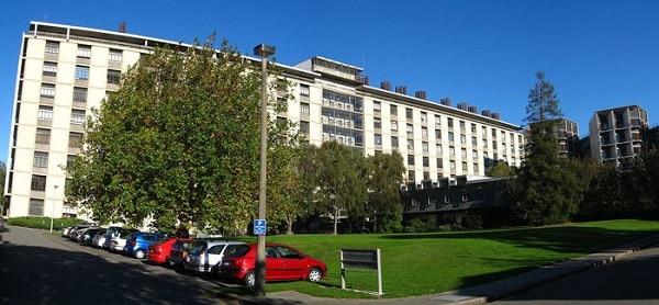 Đại học Canterbury.