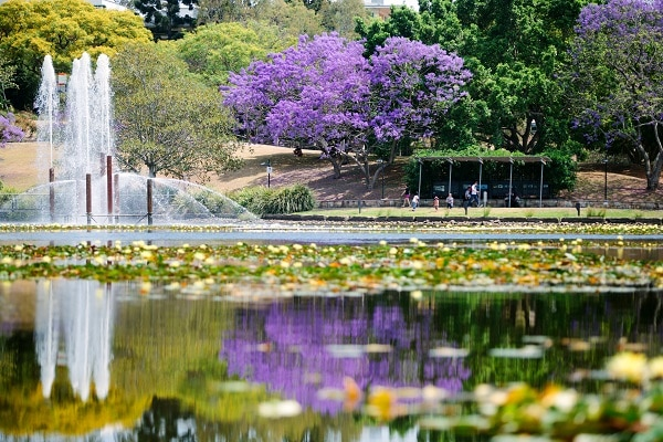 10 Trường Đại Học Đẹp Nhất Nước Úc 2