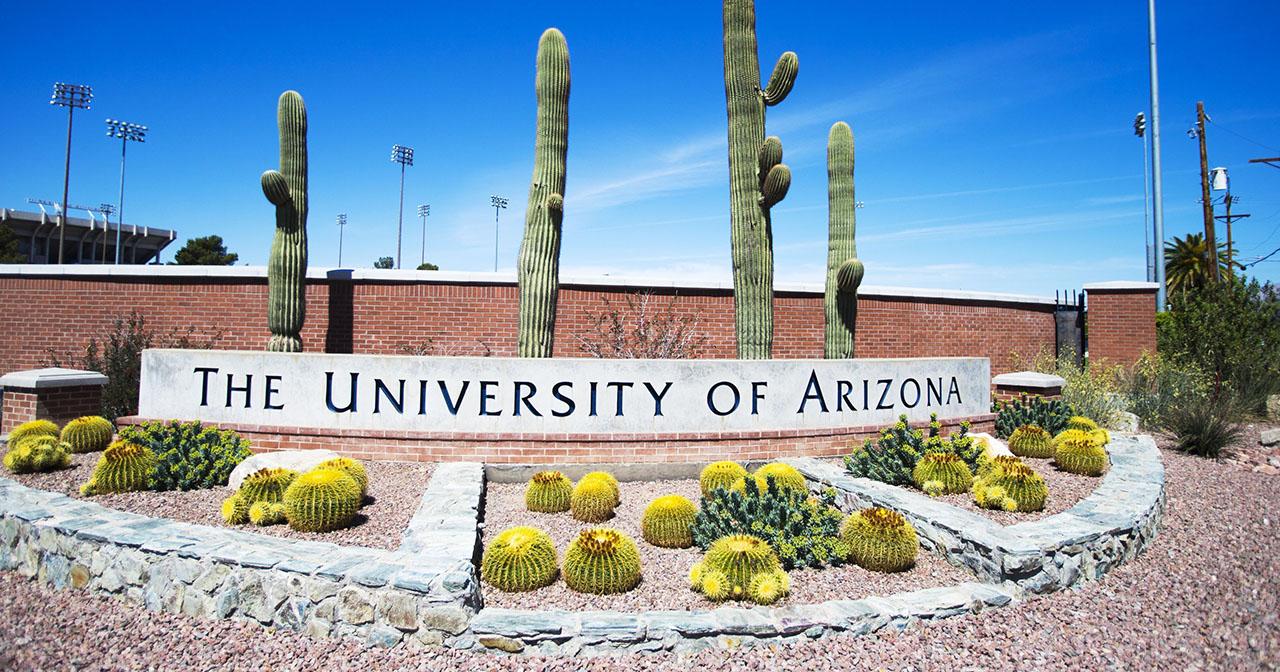 Thông tin University of Arizona: ngành học, học phí, đánh giá 1